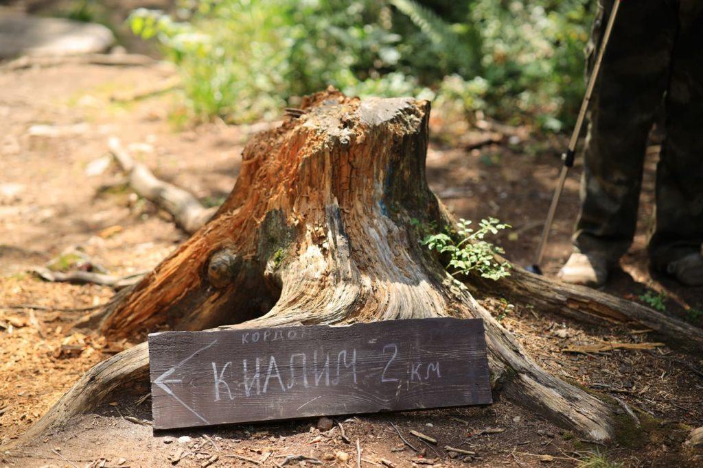 Деревянный указатель до приюта Киалимский кордон